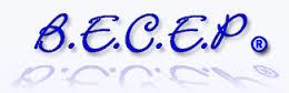 BECEP est partenaire de NEONEXT